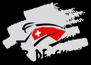 Dorsales oficiales del Tour de Suiza